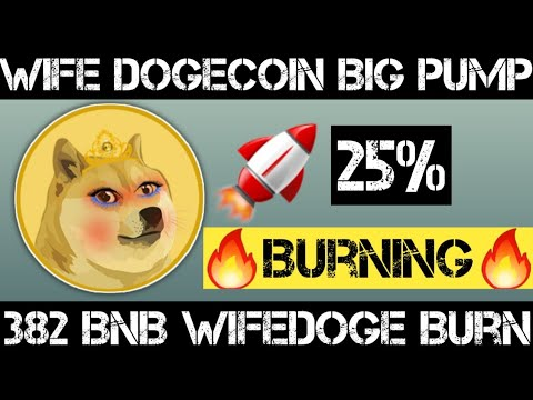 🔥Wife Dogecoin Big Burning Complete🔥 | Wife Dogecoin Future | Cryptocurrency News Today
