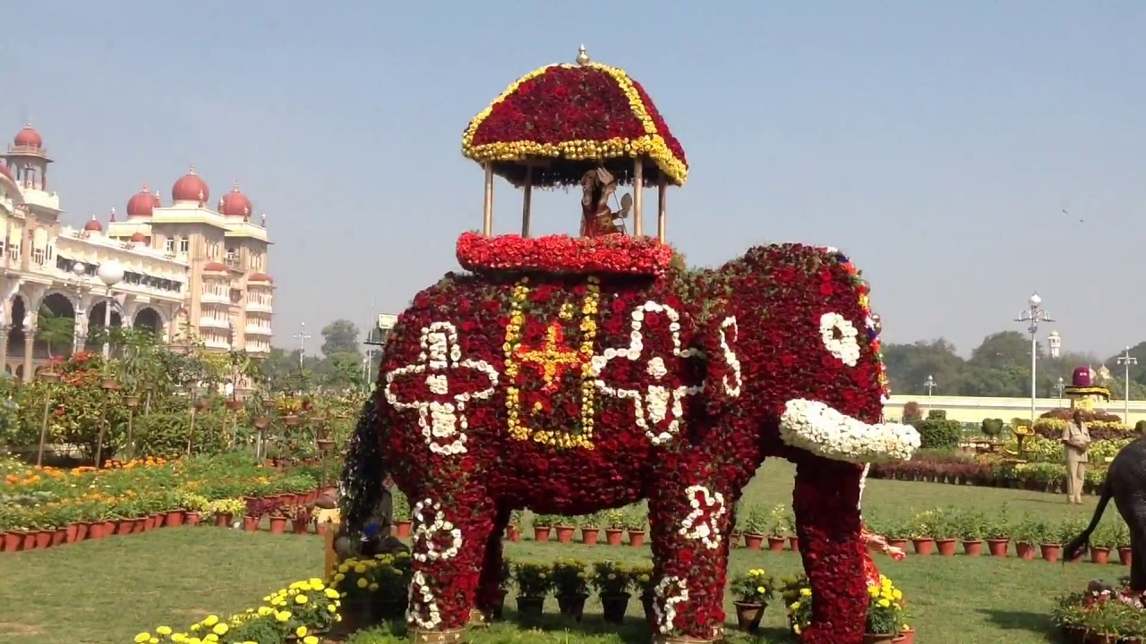 flower show at mysore palace december 2016 hd youtube