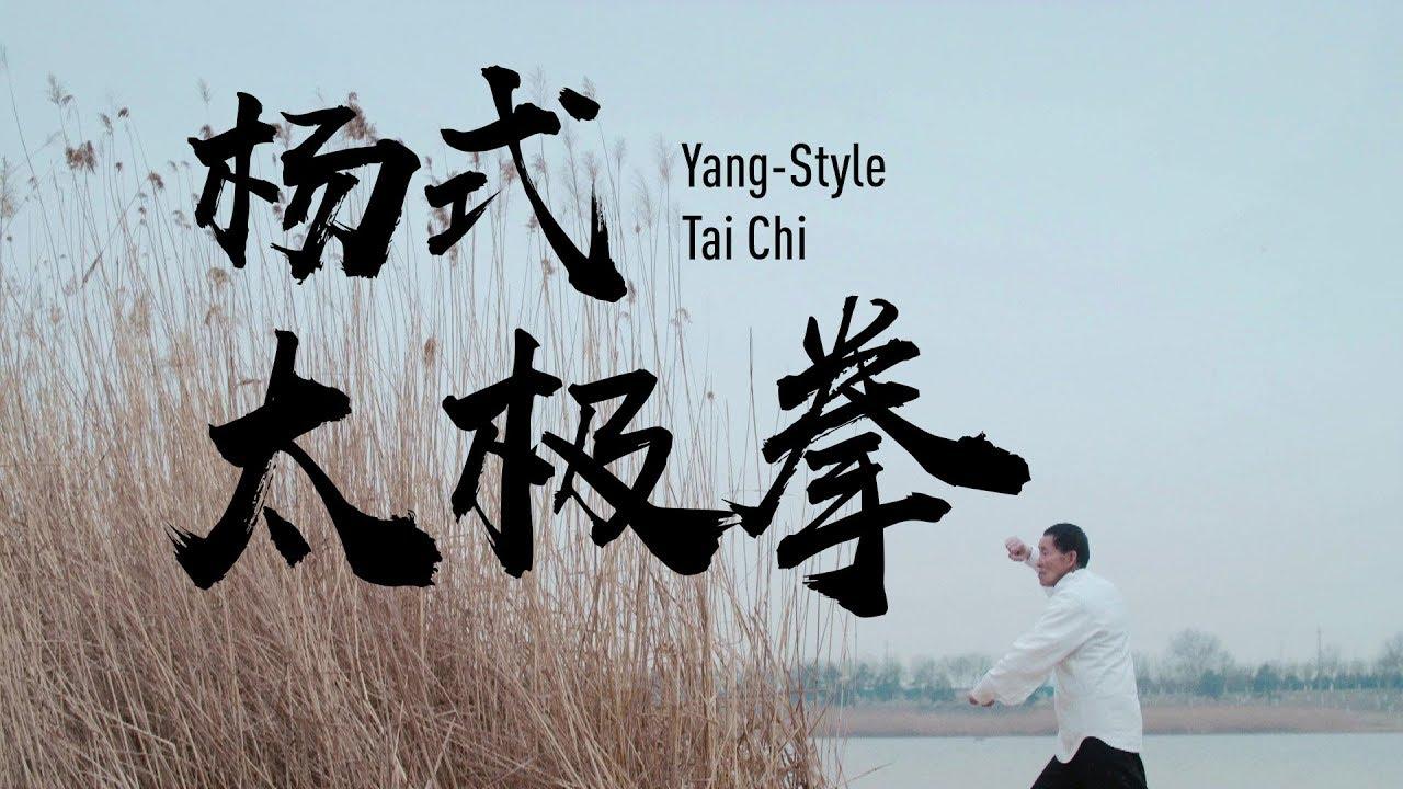Yang Style Tai Chi