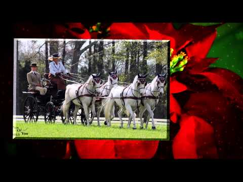 Happy Holidays from the United States Equestrian Federation