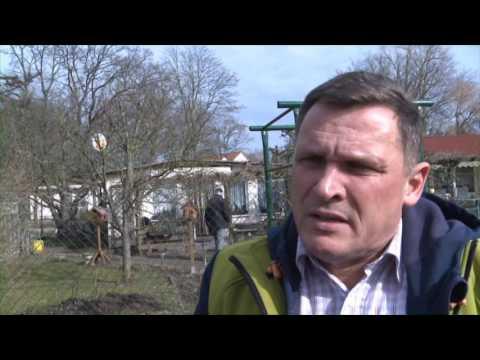 Kleingärten am Erlengrund in Rostock bleiben