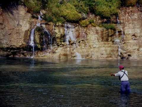 Fly fishing for Bull Trout in Fernie, BC Elk River Tribs