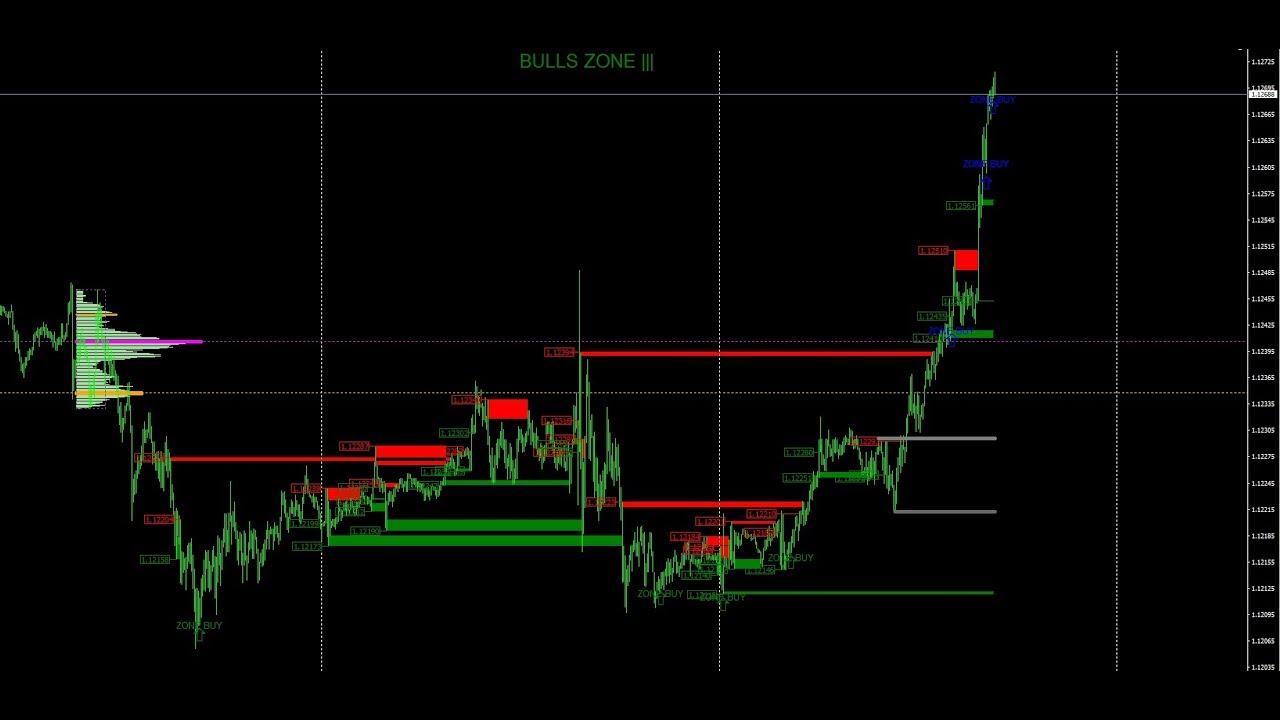 Торговля опционы форекс бухгалтерский учет торговли на бирже