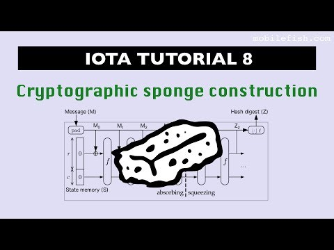 IOTA tutorial 8: Cryptographic sponge construction