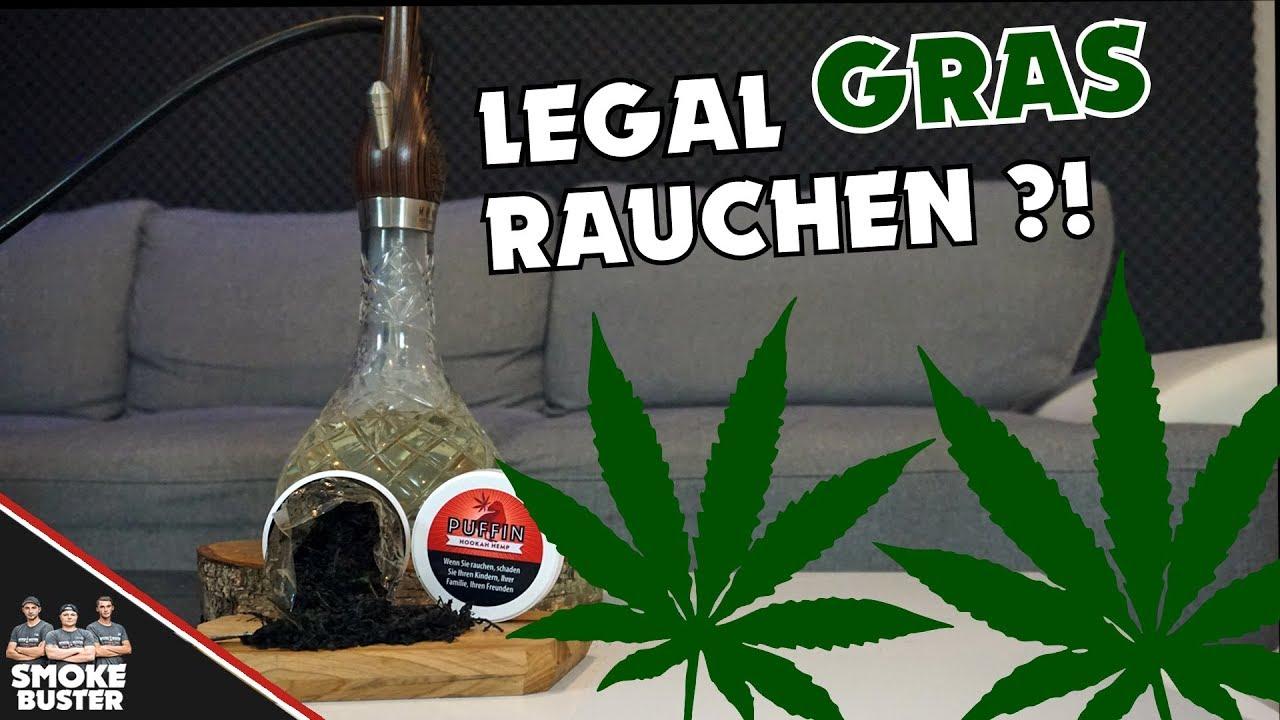 Gras LEGAL in der SHISHA rauchen! 🌿😱 - YouTube