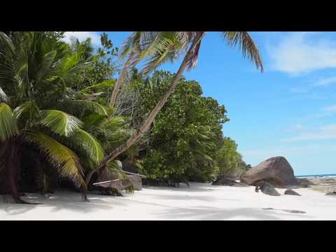 Vlogging from the Hilton Seychelles Labriz