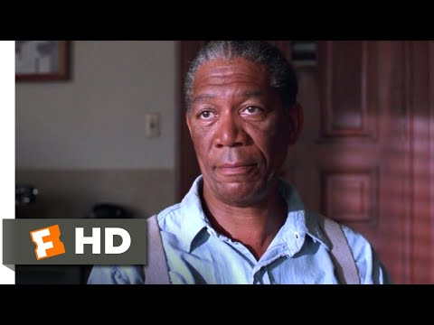 The Shawshank Redemption (1994) - Red's Parole Hearing Scene (9/10)   Movieclips