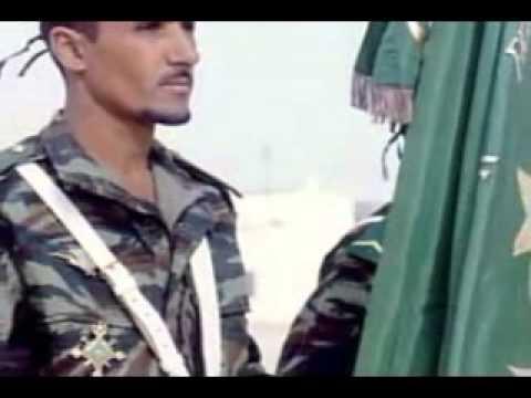 Musique nationale de Mauritanie Dimi Mint Abba