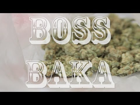 Behind The Scenes:  BOSS BAKA