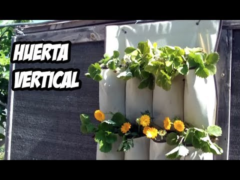 Como hacer una huerta vertical paso a paso youtube for Como se realiza un huerto vertical