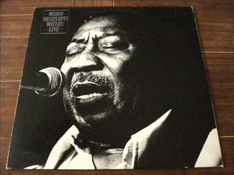 Muddy Waters Vinyl (all Aboard)