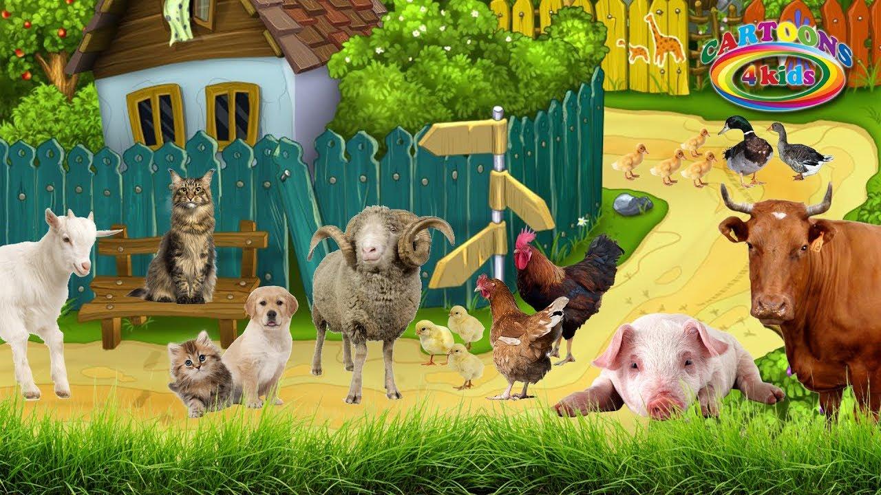 домашние животные картинки со звуками животных летний