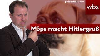 YouTube-Mops kann Hitlergruß - Ist das illegal? | Rechtsanwalt Christian Solmecke