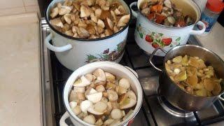 замораживаем грибы на зиму