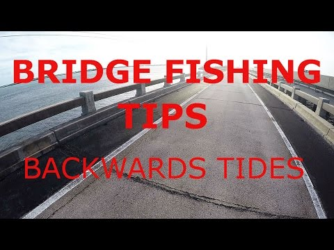 Bridge Fishing - Backwards Current Strategies