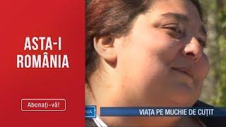 Asta-i Romania(14.04.)-Viata pe muchie de cutit Tanara de 230 kg, salvata se la moarte P ...