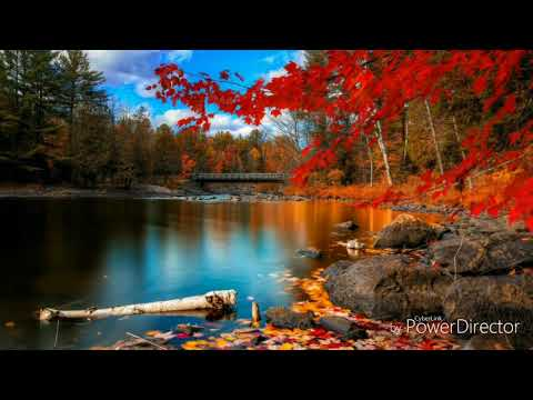 Best Mesmerizing music compilation!  Best relaxing music!
