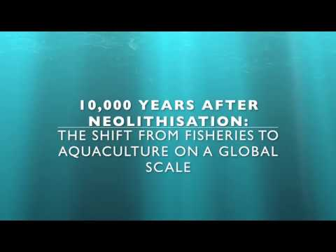 The Shift From Fisheries To Aquaculture On A Global Scale