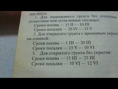 КОГДА НАЧИНАТЬ ПОСЕВЫ ТОМАТОВ ДЛЯ ОТКРЫТОГО ГРУНТА? Ольга Чернова.