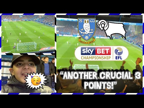 Sheffield Wednesday vs Derby County *AWAY DAY VLOG* - LIMBS IN THE AWAY END!!!
