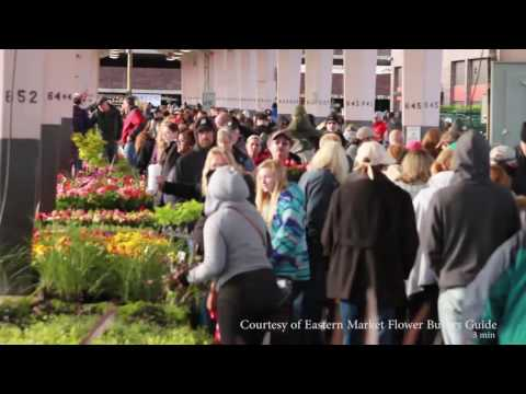 Detroit Eastern Market Flower Day 2016 Crowds 7AM