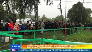 Сотни человек ищут исчезнувшую в нижегородском лесу девочку