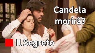 Il Segreto Candela muore ? Bosco il figlio di Pepa - Anticipazioni