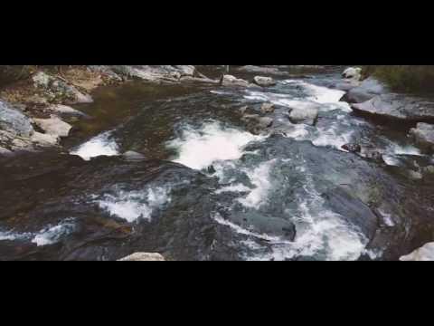 Vestigo Adventures - Chattooga River Trail