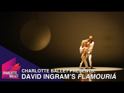 From the Stage - David Ingram's Flamouria