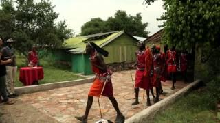 Kenya Safari - Masai Mara Experience