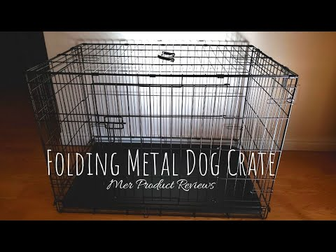 Amazon Basics Folding Metal Dog Crate Review And How To Keep A Clean Kennel