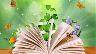 Книги  Степановой  Н  А