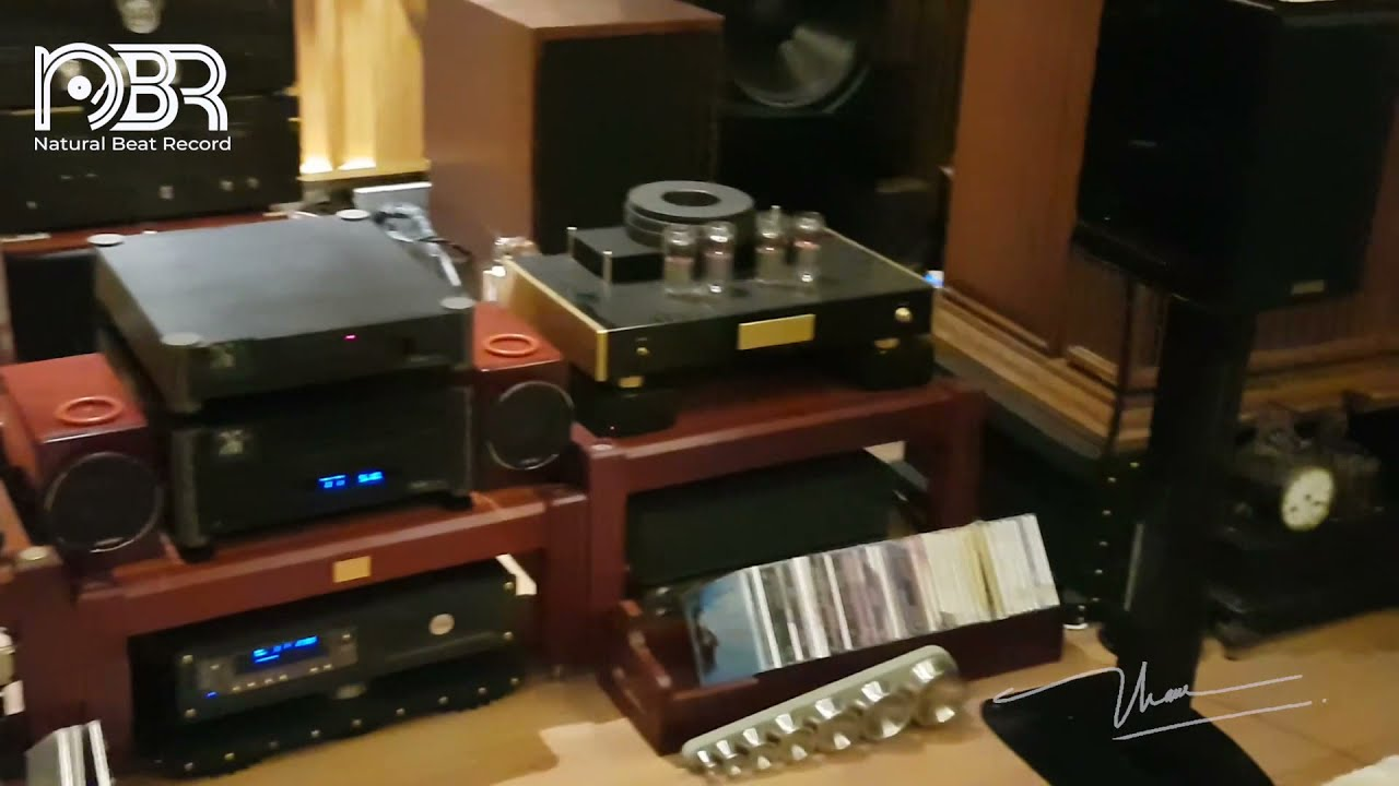 Audiophile Choice - High quality audio system for Audiophile's Room - Audiophile NBR STORE