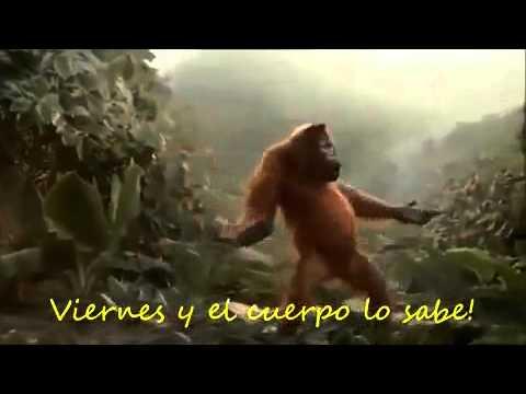 Jajajajaja Videos graciosos de Whatsapp!!!  #Mono