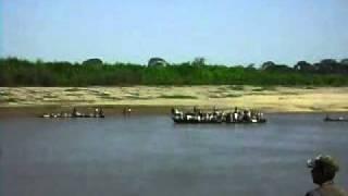 Yuracaré y Mojeños -Río Ichilo