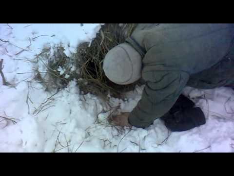 Акорды к песне в цой белый снег