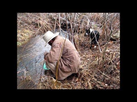 Idaho Hillbilly Gold Prospecting