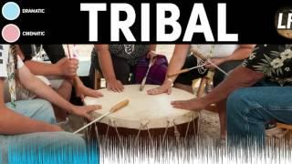 Dramatische Tribal Hintergrund Instrumental | Royalty Free Music