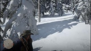 Red Dead Redemption 2_40