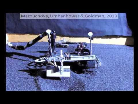 Robot inspired by sea turtles uses flippers to navigate tough terrain