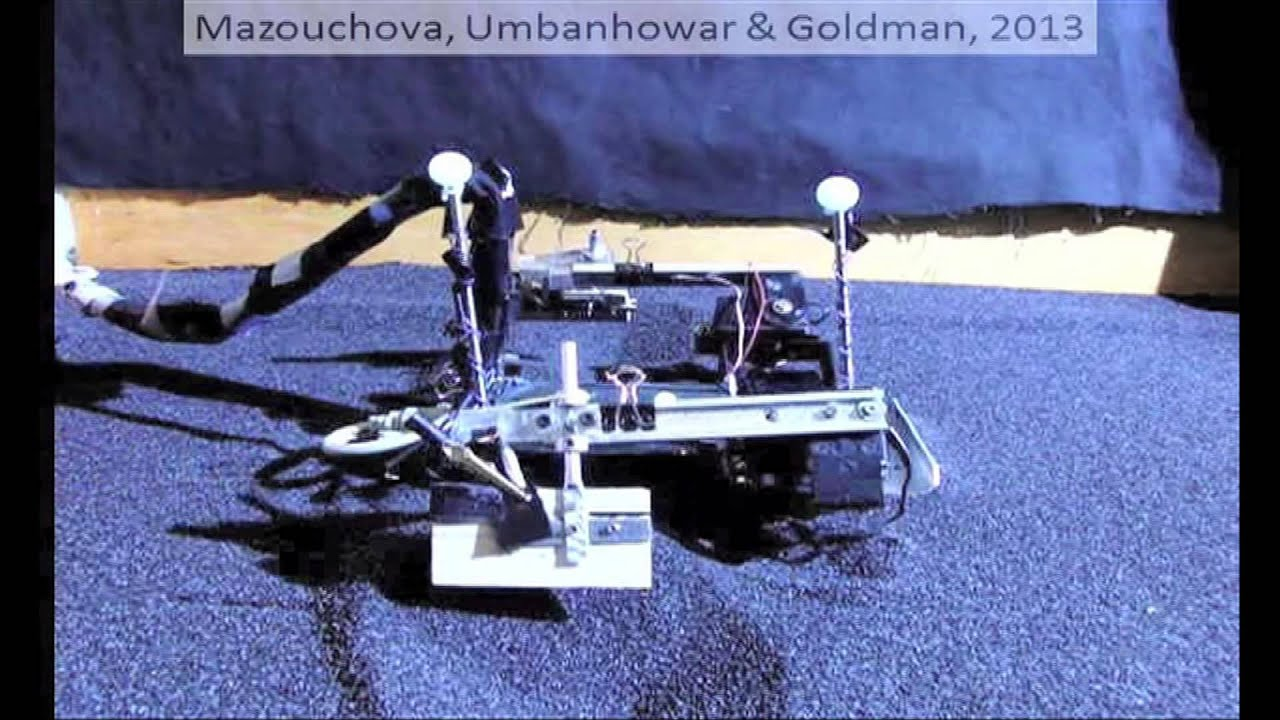 Flipperbot': Sea turtles inspire beach-walking robot (w/ video)