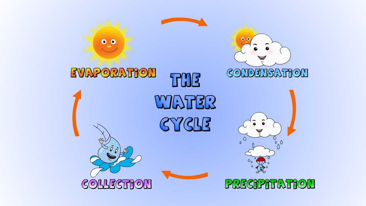 hight resolution of the diagram below show the water cycle