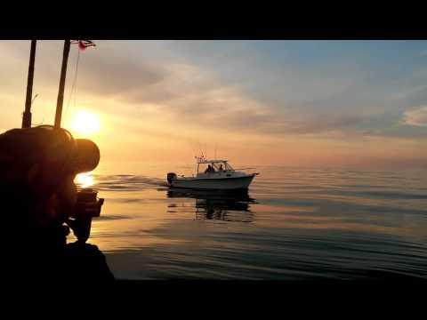 Cod and Haddock Fishing - Stellwagen Bank