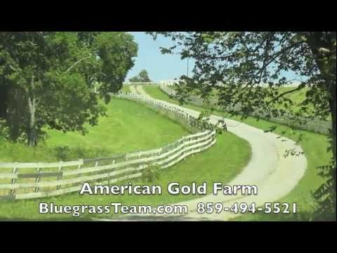 American Gold Farm Perryville, KY Kentucky farm house for sale