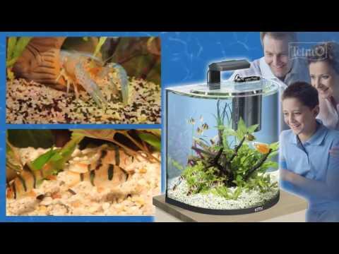 Аквариум 30 литров Тетра Aqua Art. Обзор