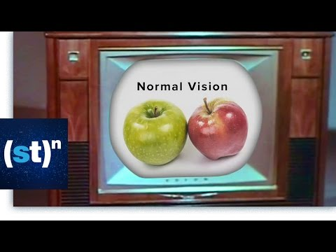Color Blindness: The Most Common Genetic Disorder | SciTech Now