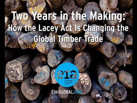 Two Years in the Making: How the Lacey Act Is Changing the Global Timber Trade