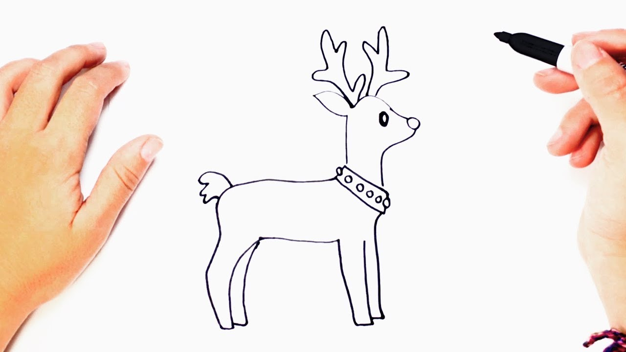How To Draw A Reindeer Reindeer Easy Draw Tutorial Youtube