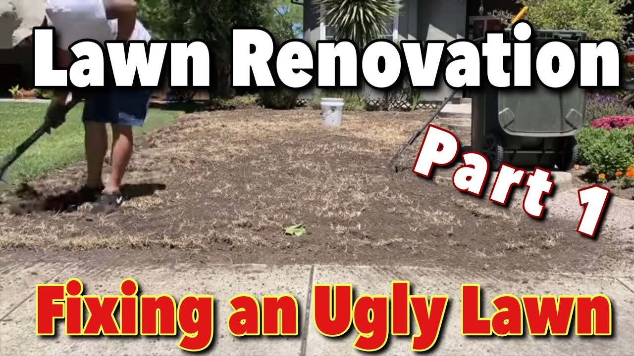 Mini Lawn Renovation   Part 1- Sod Removal   Sprinkler Head Replacement