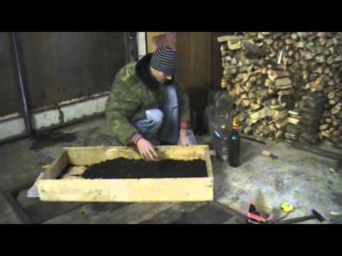 Готовые блоки для выращивания шампиньонов в Украине